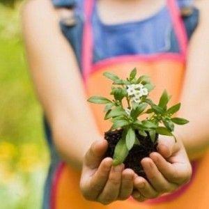 Plantas-para-los-niños-Feat